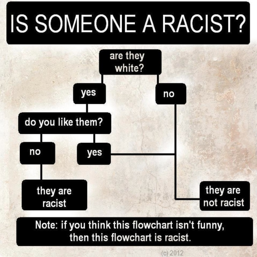 racism-ad-hominem-flow-chart