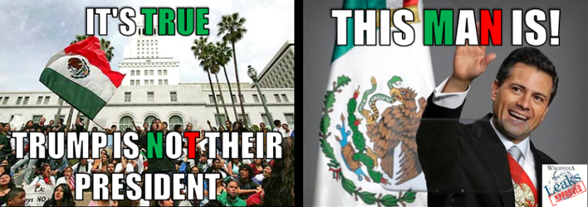 trump-is-not-their-president-mexican-illegals