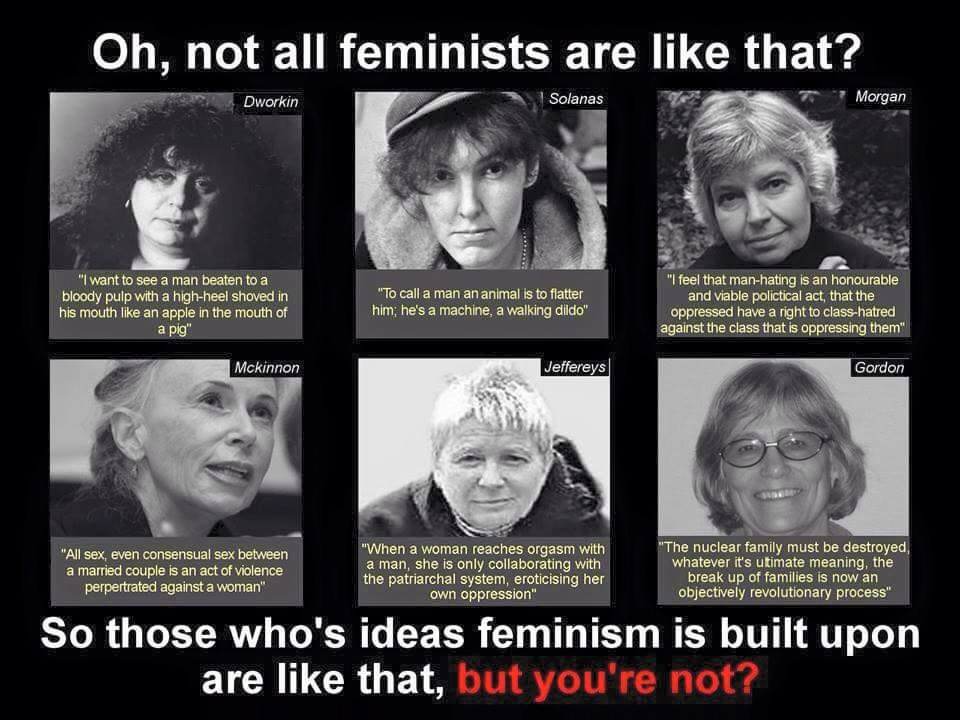 11535927_798839713546647_4439926932918747285_n-feminism