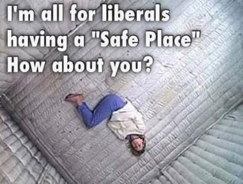 12509237_895432970553987_255658701071750267_n-liberal-padded-safe-space
