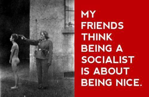 12717867_931415356955748_8647230382995391287_n_my-friend-thinks-socialism-is-nice