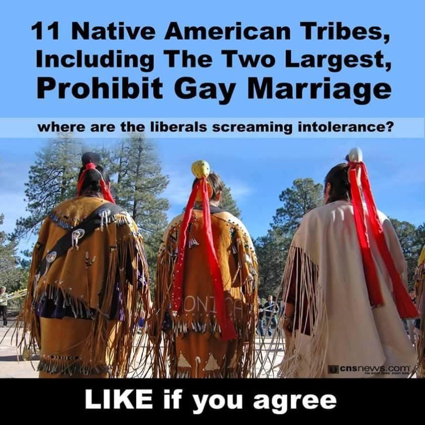 14568242_1065128056917810_7336071689308734840_n-native-american-xenophobic-homophobic-lgbt-gay-zinn