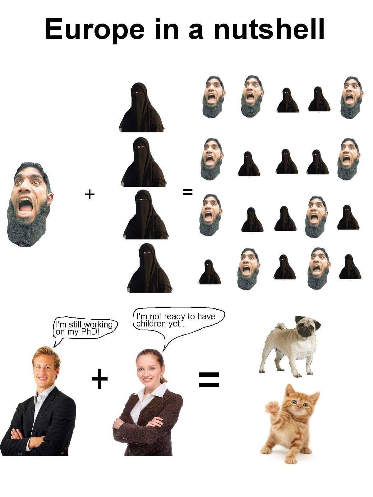 13732004_1145093678883525_8968807461092702749_o-europa-how-islam-spreads-in-a-nutshell