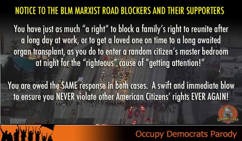 blm-freeway-blockers