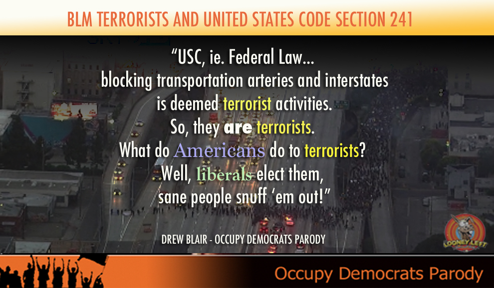 blm-terrorist-freeway-blocks