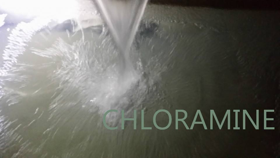 EPA Destroys Health, Pipes and Environment with Chloramine