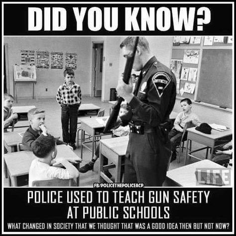 firarm safety guns taught in school
