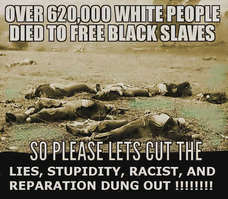 620000 white people died to free black slaves cut the lies stupidity racist and repration dung