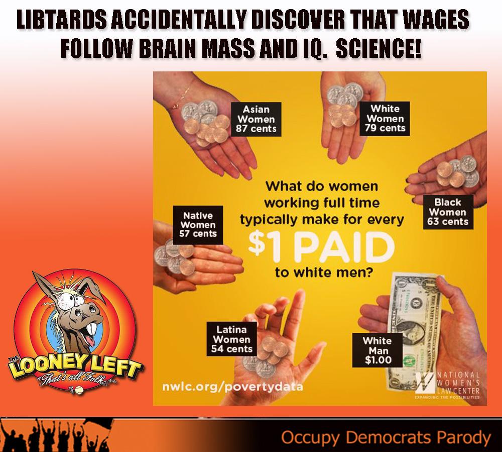 ODPMEME wages follow brain mass and IQ