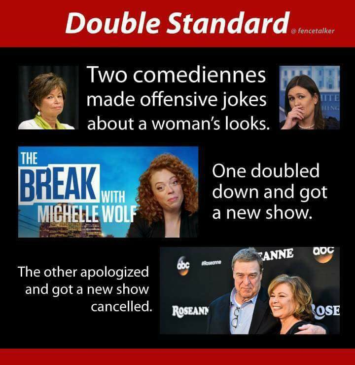 double standard offensive joke about womens looks michelle wolf roseanne barr