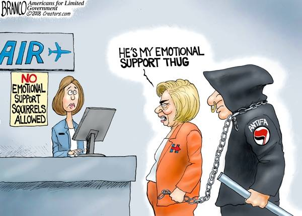hillary antifa emotional support thug fascist bully partyofcrime incivility