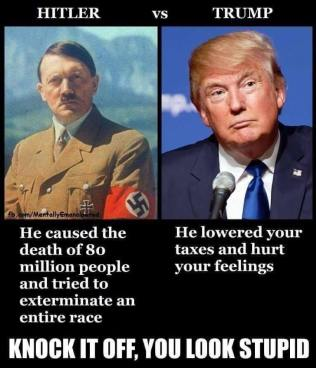 hitler vs trump caused death of 80 million tried genocide trump hurt feelings lowered taxes stupid crybaby nazi