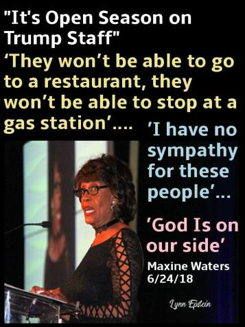 maxinewaters inciting violence and denial of service