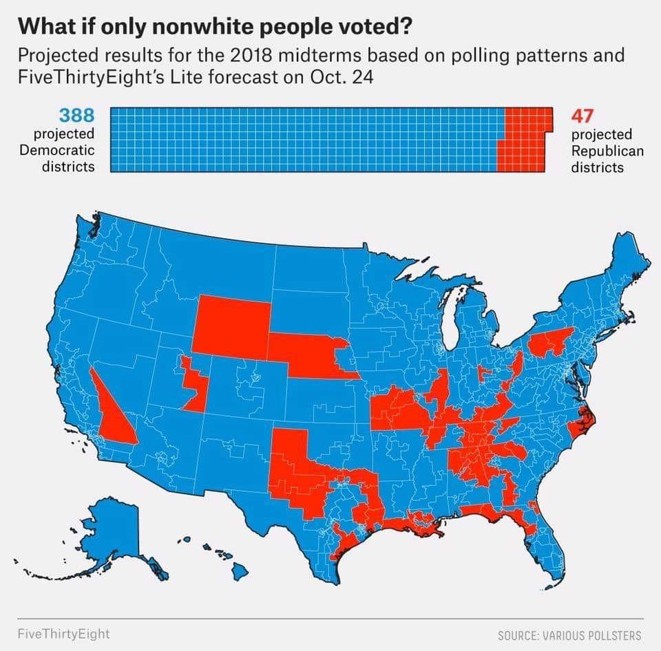 non white vote poc cultural marxism democrat manipulation of immigration