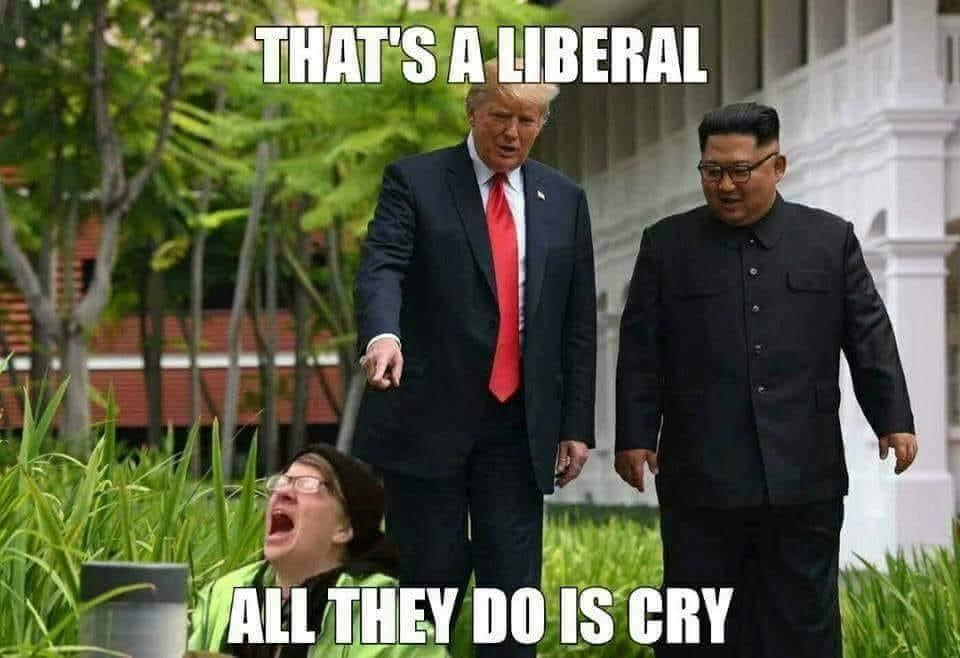 The Democrat Personality